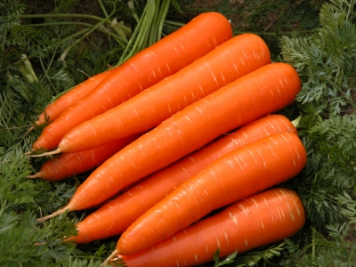 Carrots: Health Benefits Of Carrots