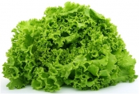 health benefits of lettuce leaves