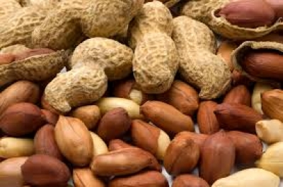 Peanuts: Health benefits of Peanuts