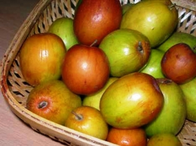 Jujube: Health Benefits Of Jujube fruit