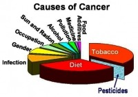 Causes of Cancer: Symptoms,Treatments and Prevention Pg1(Video)