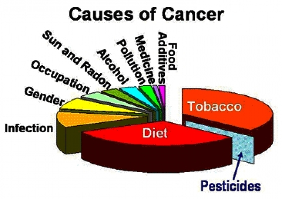 Image result for causes of cancer