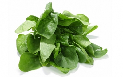 Spinach: Health benefits of spinach