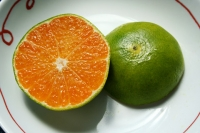 Oranges: Health Benefits of Oranges